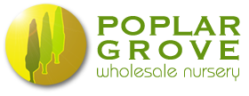 Image result for poplar grove nursery logo